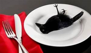 Crow to eat